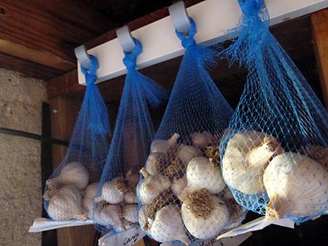 Как сохранить чеснок зимой в домашних условиях