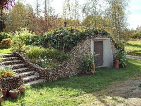 Подзимние посевы на даче
